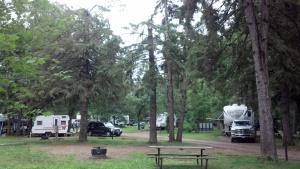 Itasca State Park Oak Loop camground
