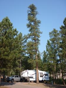 Blue Bell campsite